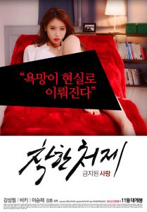 Good Sister-in-Law – Forbidden Love (2015)